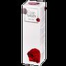 Стикс Розовый Сад молочко для тела
