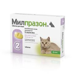 Джероб косметика для кошек купить в москве купить косметику академи красноярск