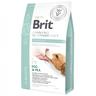 Корм для собак BRIT VDD Struvite беззерновая диета при струвитном типе МКБ сух.